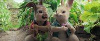 «Індустрія кіно» пояснює, чому потрібно дивитися казку «Кролик Пітер»