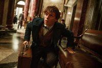 Виконавці головних ролей розкрили секрети продовження «Гаррі Поттера»